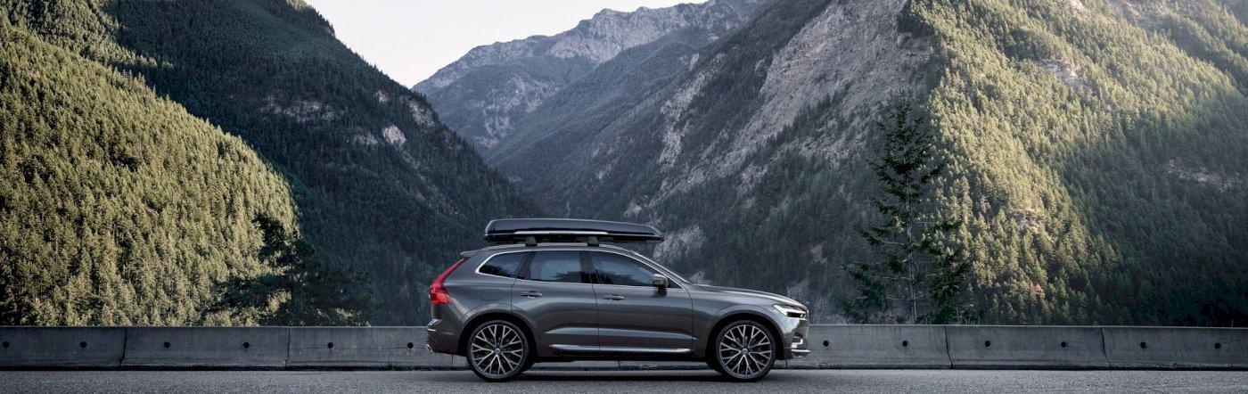 Volvo_XC60_Inscription_Pine_Grey_Seitenschuss_Natur_Dachbox_TIM00183_processed.jpg